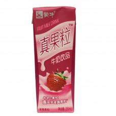 蒙牛真果粒(草莓) 250gX8*4