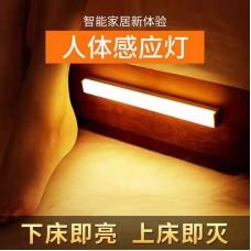 30cm Multifunctional Cabinet Lamp 100pc/case